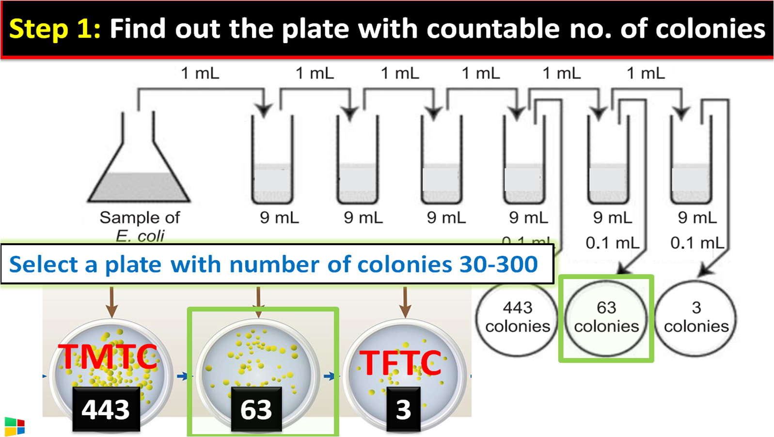 plate with countable no. of colonies
