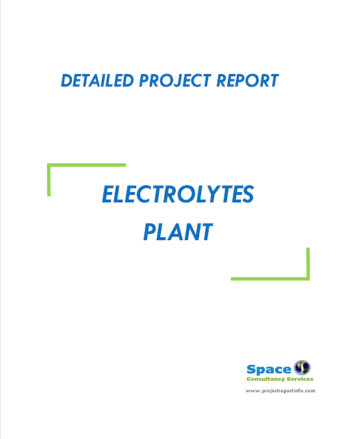 Project Report on Electrolytes Plant