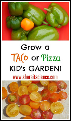 Grow a Taco or Pizza Garden gardening with kids theme gardens