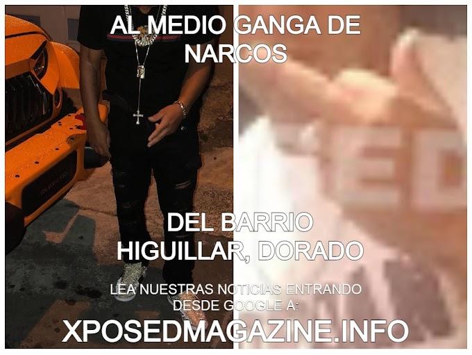 AL MEDIO GANGA DE NARCOS DEL BARRIO HIGUILLAR, DORADO