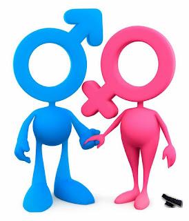 Твърдост-мекост или мъжественост - женственост