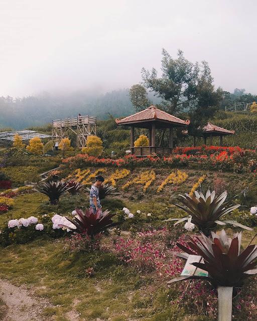 Taman Bunga di Jawa Tengah