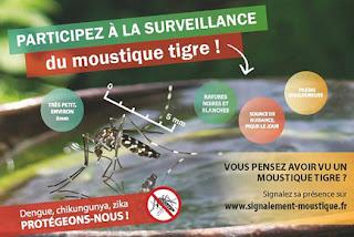 https://www.paca.ars.sante.fr/moustique-tigre