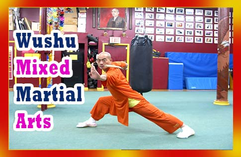 Wushu Mixed Martial Arts
