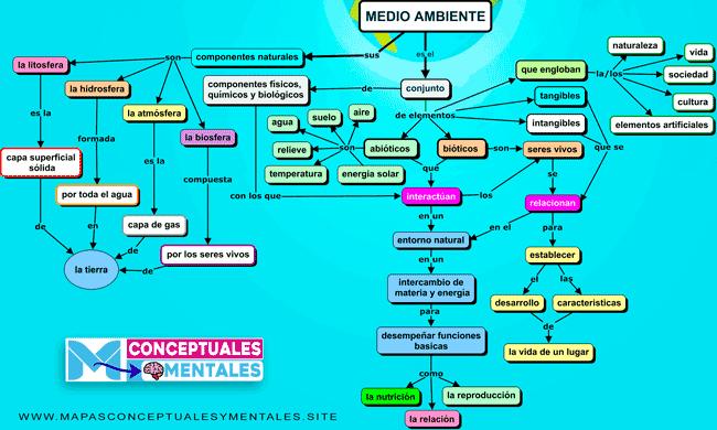 Mapa conceptual del medio ambiente, concepto y elementos que lo conforman