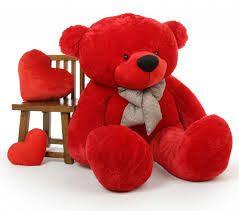 cute teddy bear whatsapp dp, cute teddy bear dp for whatsapp, whatsapp dp cute teddy bear,