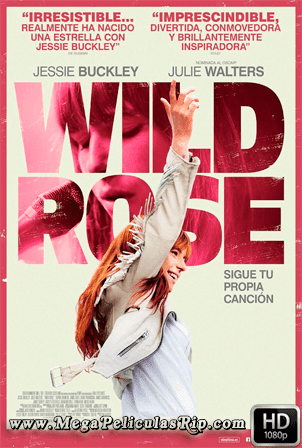 Wild Rose [1080p] [Latino-Ingles] [MEGA]