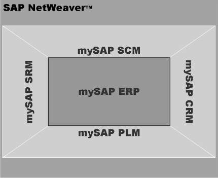 mySAP Business Suite - Consultoria-SAP