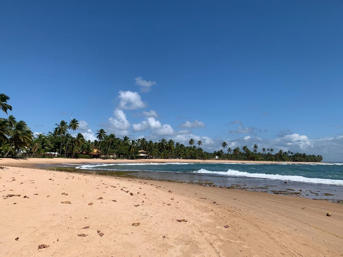 praia tres coqueiros barra grande bahia