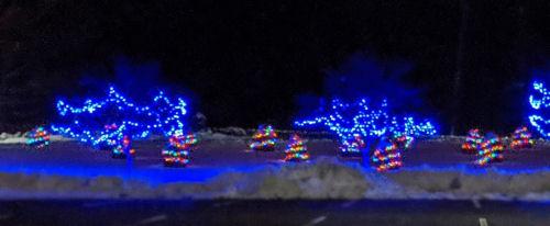 blue Christmas tree lights