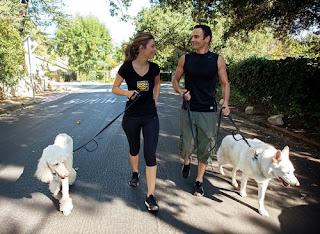 MM walking dogs