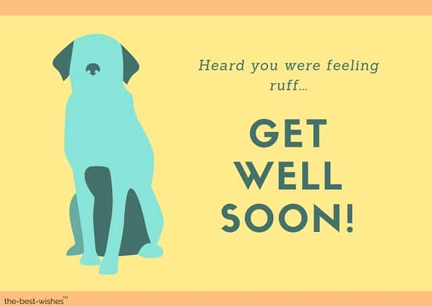 feeling ruff dog get well soon messages
