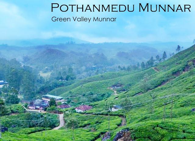 Pothanmedu Munnar
