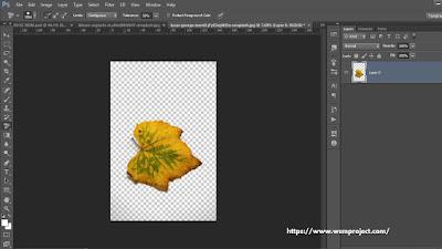 cara-menghilangkan-background-di-photoshop