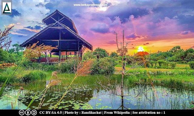 Diyasaru Uyana Park