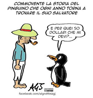 pinguino e pescatore, commuove il web, riconoscenza, umorismo, vignetta