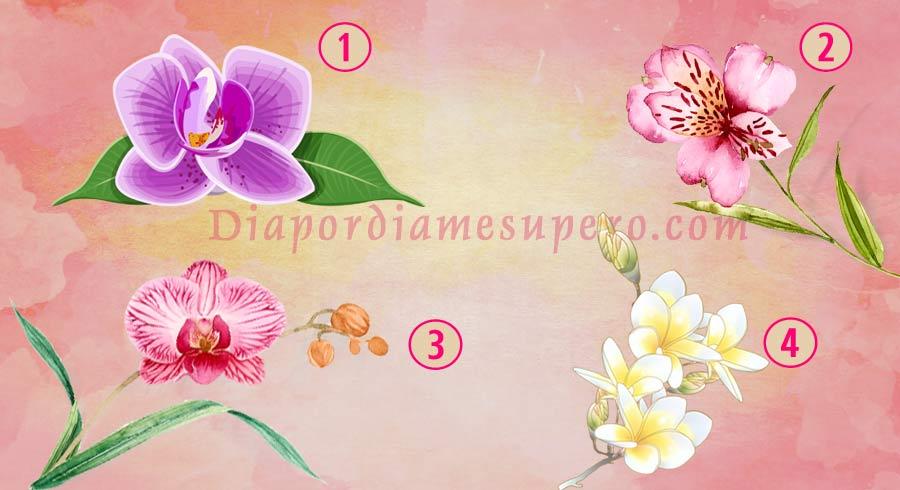 Test: La orquídea que elijas te podría revelar lo que te hace especial