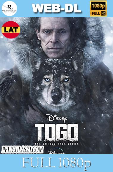 Togo (2019) Full HD WEB-DL 1080p Dual-Latino