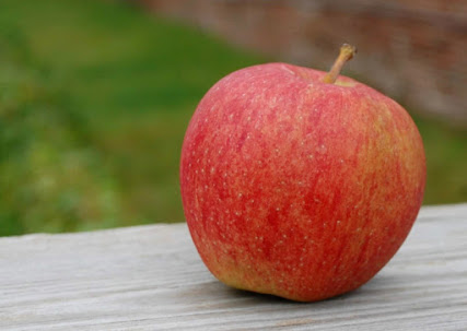 Classically shaped red-orange apple.