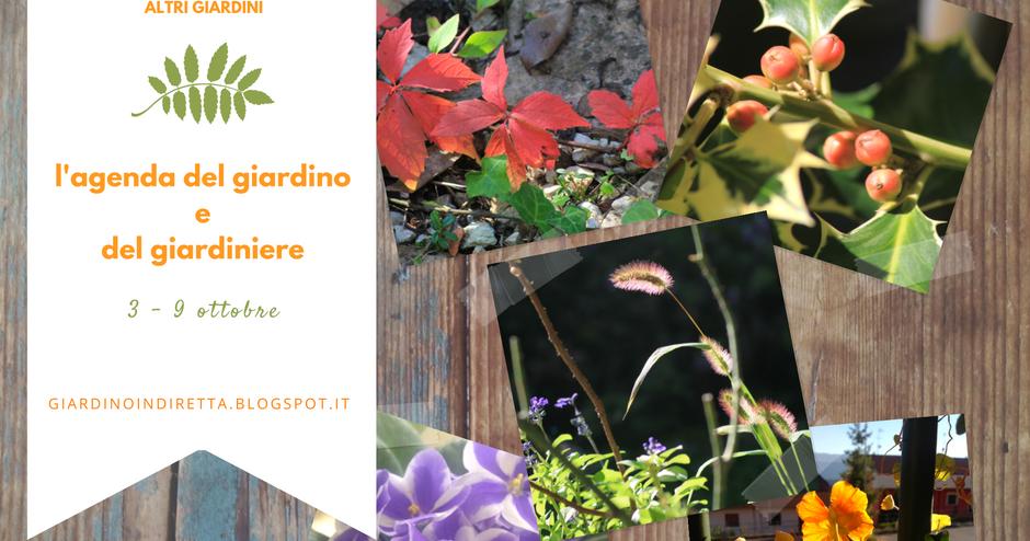 l'agenda del giardino e del giardiniere (3 - 9 ottobre)