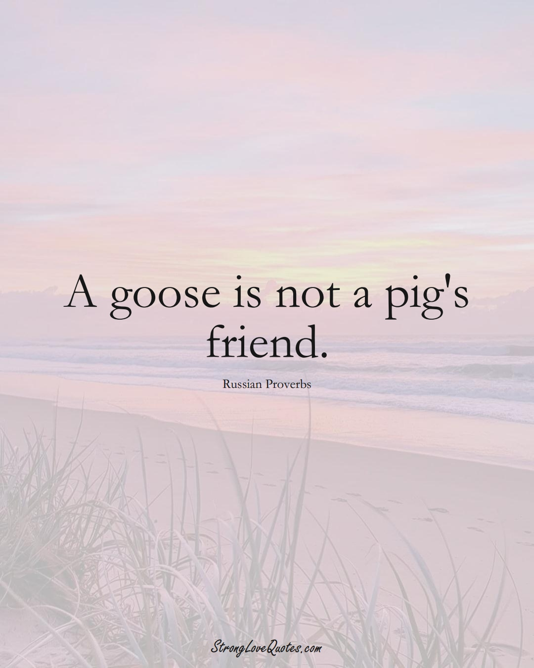 A goose is not a pig's friend. (Russian Sayings);  #AsianSayings