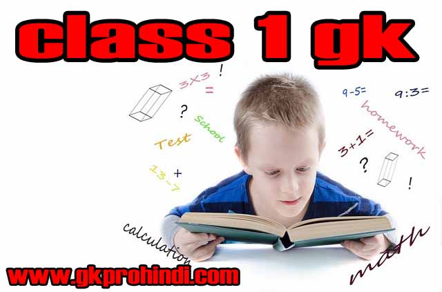gk questions for class 1 gk pro hindi