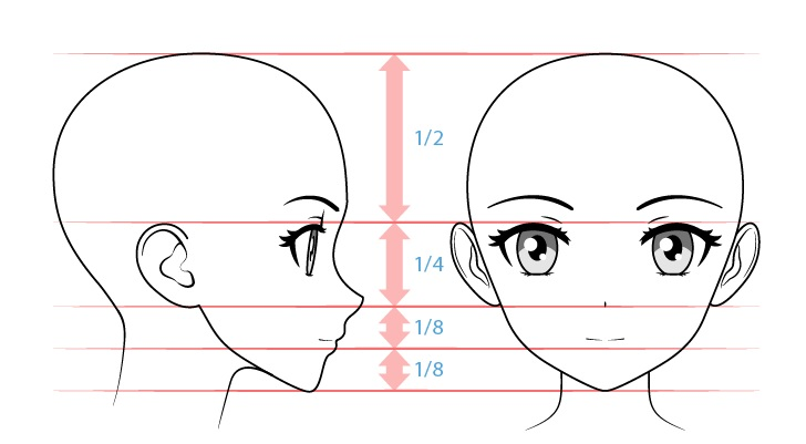Anime girl face proportions