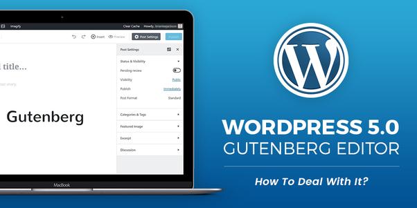 WordPress 5.0 Güncellemesi