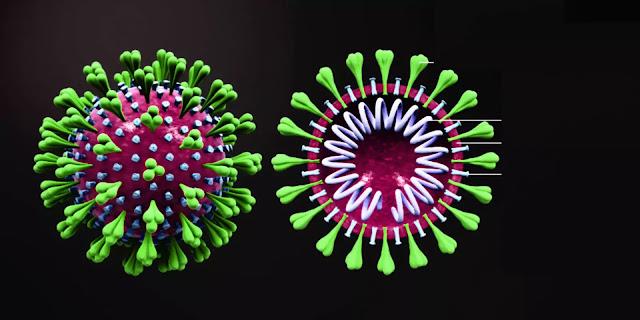 latest coronavirus news : भारत में कोरोना से मरने वालों की संख्या..