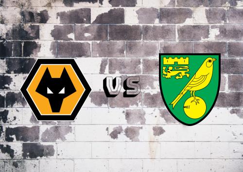 Wolverhampton Wanderers vs Norwich City  Resumen