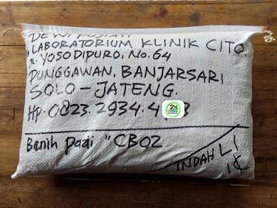 Benih Pesanan   DEWI PUJIATI Solo, Jateng.   (Sesudah Packing)