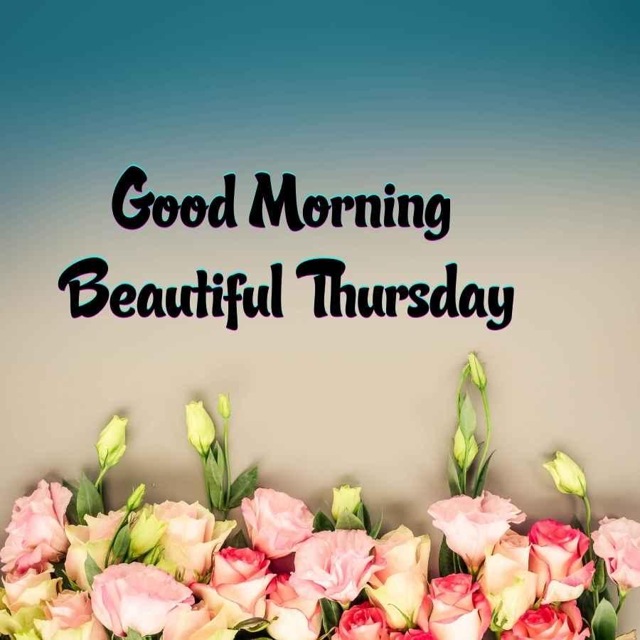 good morning thursday flowers