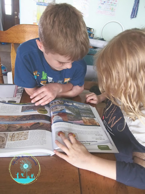 Apologia Earth Science is great for multiple ages.