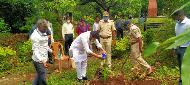 वन महोत्सव काळात सवलतीच्या दरात रोपे उपलब्ध करणार;वनमंत्री संजय राठोड