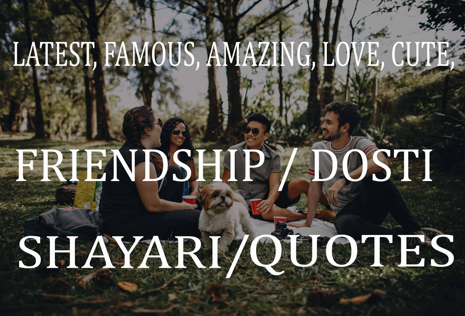 20 Latest Friendship Shayari Best Dostiyaari Status
