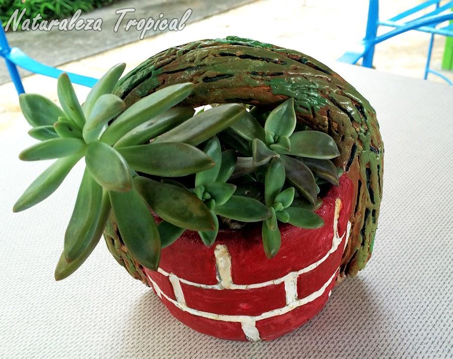 Otra variante de maceta de barro con aspecto de pequeño pozo y plantas crasas