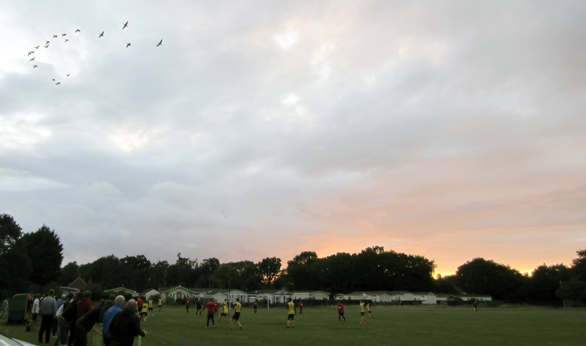 Geese flying over the Alfred Palmer Memorial Recreation Ground in Mortimer
