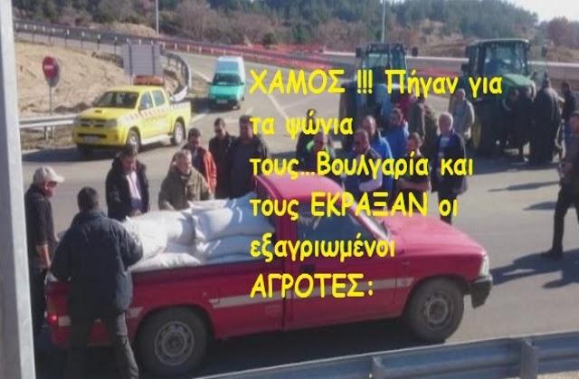 """""""ΝΤΡΟΠΗ σου,γιατί δεν παίρνεις τα Ελληνικά…;"""" (βίντεο)"""