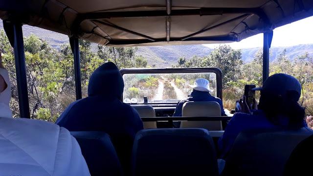 Game drive on safari vehicle