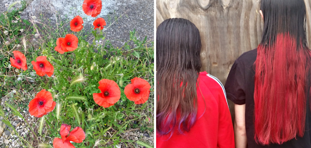 Poppies in my front garden and my girls newly dyed hair.
