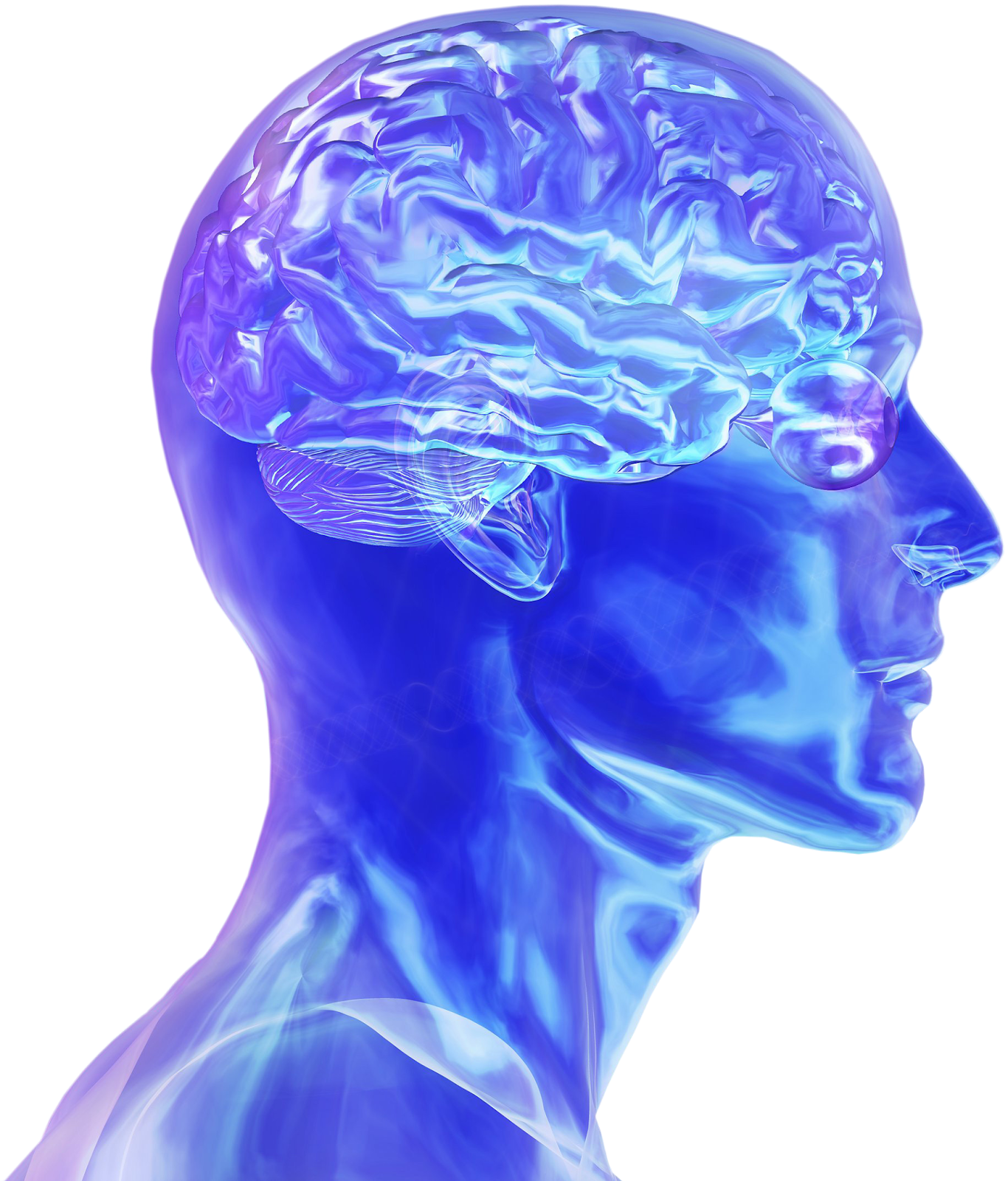 music and the brain research paper