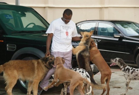 , Ali Baba show off Pet Dogs named after present President and formers, Latest Nigeria News, Daily Devotionals & Celebrity Gossips - Chidispalace