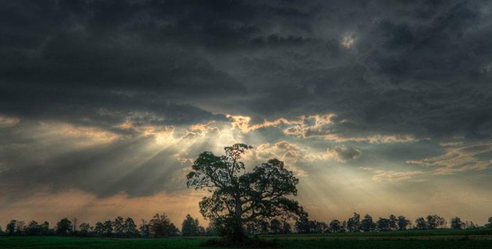 आनंदघन - मराठी कविता | Anandghan - Marathi Kavita