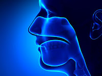 What Is Nasopharynx Cancer