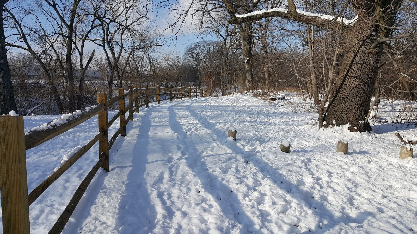 The Chicago Real Estate Local: Sold! Clients win mutiple offer for Forest Glen double-lot house