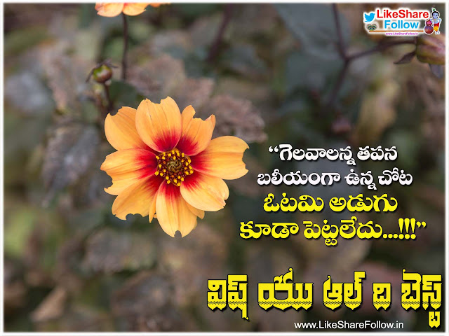 Wish you all the best quotes wishes greetings in telugu