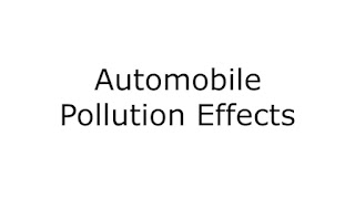 Automobile Pollution Effects