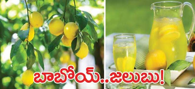 వర్షాకాలంలో నిమ్మకాయ.. తింటే మంచిదేనా? | Lemon in the rainy season .. is it good? | GRANTHANIDHI | MOHANPUBLICATIONS | bhaktipustakalu