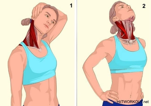 Neck side muscles Stretch