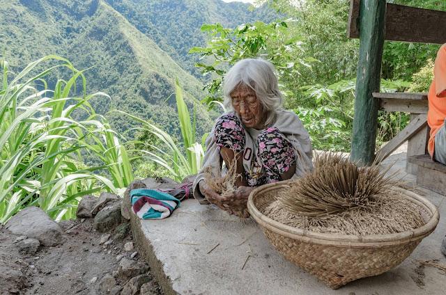8th Wonder of the World Batad Rice Terraces Ifugao Cordillera Administrative Region Philippines Batad Rice Terraces Local Folk Farmer The Oldest Woman Elder of Batad